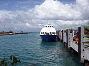 フィリピン セブ島の魅力ボホール島